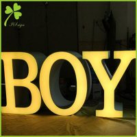 Large Decorative Standing Letters
